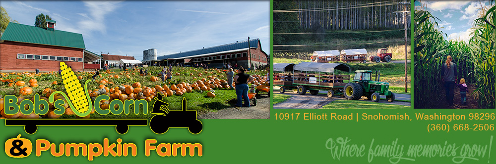 Bob's Corn Maze and Pumpkin Patch, 10917 Elliott Road, Snohomish, Washington 98296.